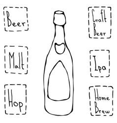 Classic beer bottle hand drawn vector
