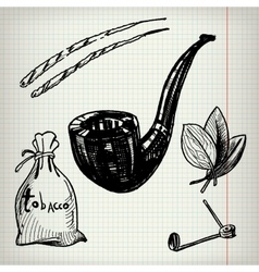 Set of sketches tobacco vector