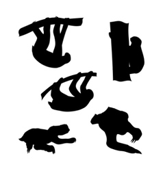 Silhouettes of a sloth vector