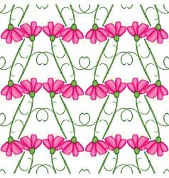 carnation pattern vector image