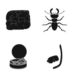 Entertainment history nature and other web icon vector