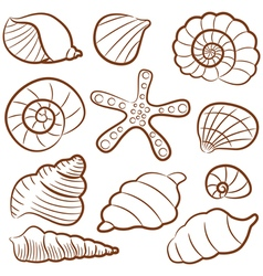 outline seashell set vector image