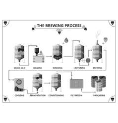 Brewery production process infographics vector