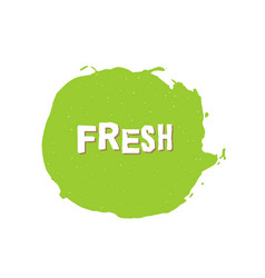 fresh vegan bio raw eco organic green design vector image vector image