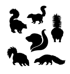 Silhouettes of skunk vector