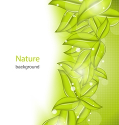 Summer card with eco green leaves vector