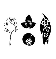 set of plants vector image vector image