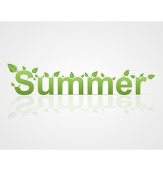 Summer text with green leaves on a white vector