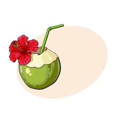 coconut cocktail drink decorated with hibiscus vector image