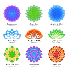 Lotus color logo label and emblem set vector image vector image