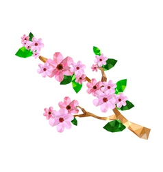 Origami cherry blossom branch vector