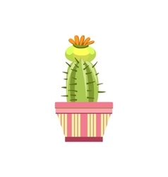 Blooming cactus in pink pot vector
