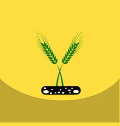 flat icon design collection ears of wheat vector image