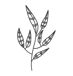 gray scale branch with leaves contour vector image