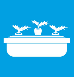 Carrots in a wooden pot icon white vector