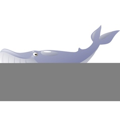 Isolated blue whale vector image vector image