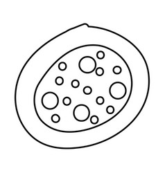 Bacterial cell structure icon vector