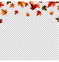 Autumn border with leaves isolated vector