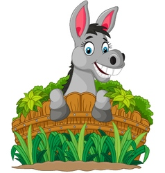 Donkey cartoon holding fence vector image