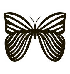 Megaloptera butterfly icon simple style vector