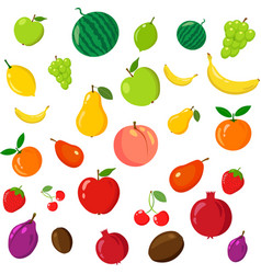 rainbow of fruits vector image