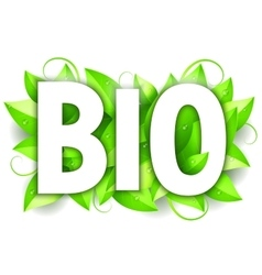 Bio word and leaves vector