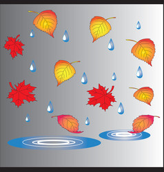 autumn theme fallen leaves and puddles vector image vector image