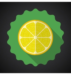 Lemon Orange Fruit Flat Icon with long shadow vector image vector image