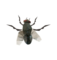 origami fly vector image
