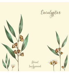 Watercolor eucalyptus leaves and branches vector