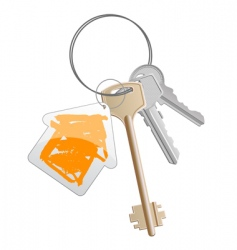 keys orange vector image vector image