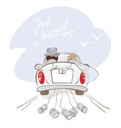Newlyweds in a car vector image