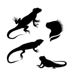 Lizard iguana set vector