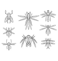 set of hand drawn cartoon alien insect designs vector image