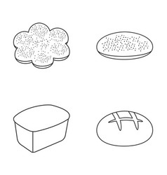 Baking pizza a round loaf rectangular bread vector