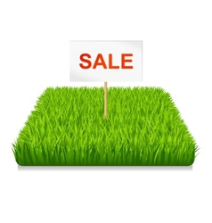 Sale green grass vector