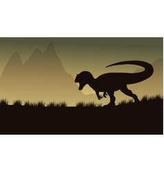 Allosaurus silhouette in fields vector image