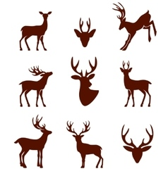 Black silhouettes of different deer horns vector image vector image