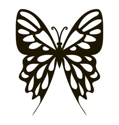 Collection butterfly icon simple style vector