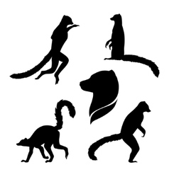Silhouettes of a lemur vector