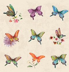 vintage a collection of butterflies watercolor vector image vector image