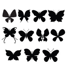 butterfly silouettes vector image