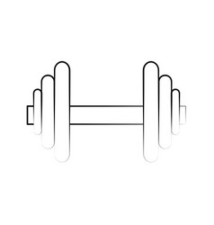 dumbbell fitness related icon image vector image vector image