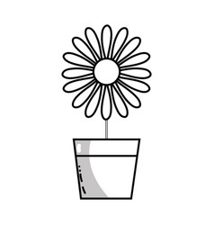 Line sunflower with petals inside to flowerpot vector