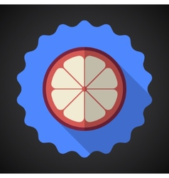 Mangosteen fruit flat icon with long shadow vector