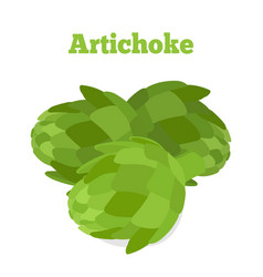 Healthy artichoke organic farm product vector