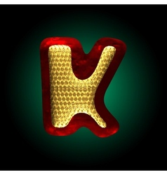 Velvet letter with gold vector