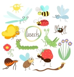 Insect set in cartoon style vector