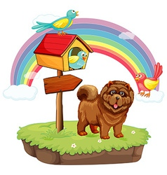 Dog and rainbow vector image vector image