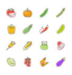Vegetables icons - tomato cucumber and chili vector